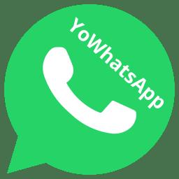 YoWhatsApp APK (Official)