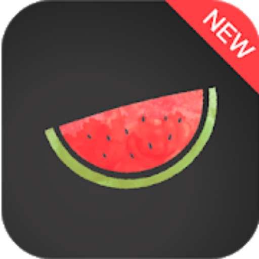 Melon VPN APK (MOD, Premium)